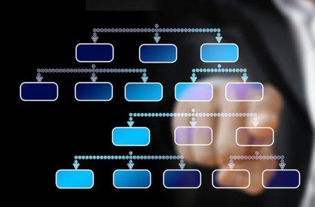 Functies binnen de marketingorganisatie