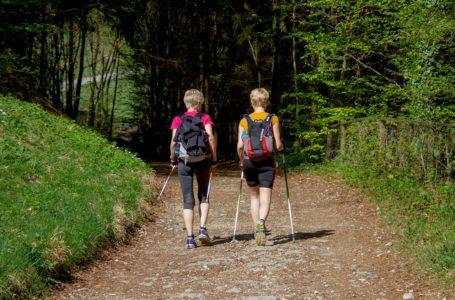 Werk aan je conditie met Nordic Walking